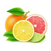 Citruspektin
