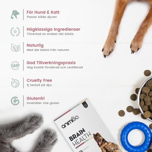 /images/product/package/brainhealthforcats_dogs-3-se.jpg