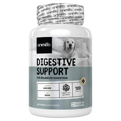 Digestive Support - Naturligt matsmältningsfrämjande tillskott med nyttiga bakterier - 120 tabletter