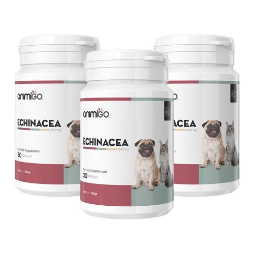 Echinacea för Hund och Katt - Tillskott som Stärker Immunförsvar - Animigo - 30 kapslar - 3-pack