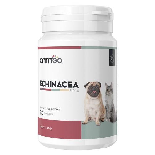 Echinacea - Naturlig förstärkning av immunförsvaret för hund och katt - 30 kapslar