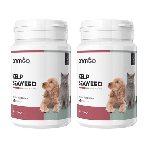 Kelp Alg för Hund och Katt - Hud- och Pälskapslar med 500mg Kelp - Animigo - 60 kapslar - 2-pack