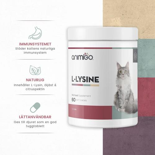 /images/product/package/l-lysine-2-se.jpg