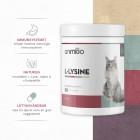 /images/product/thumb/l-lysine-2-se.jpg